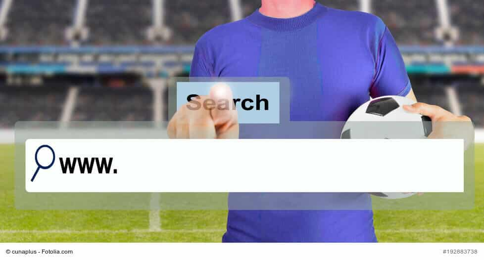 pole wyszukiwania domeny